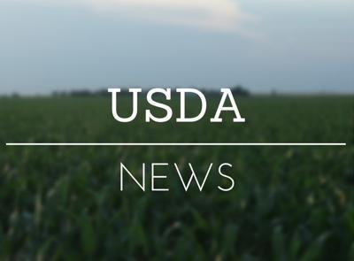 USDA News