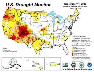 Precipitation Improves Kansas Pastures And Ranges Ag News Hpj Com