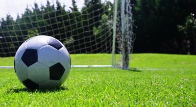 soccer wildart 2