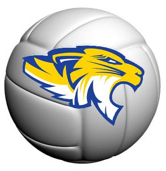 Fremship volleyball logo