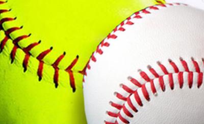 basebll & softball wildart