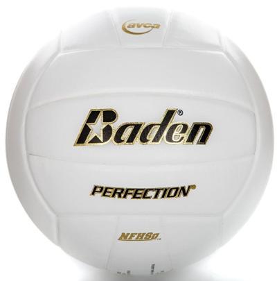 volleyball wildart