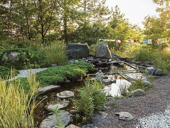 Backyard sites hudson.jpg