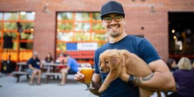 Dog breweries