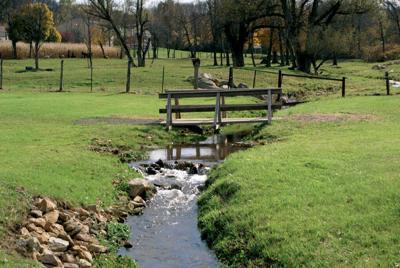 Stream and grassland RTSA