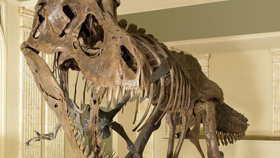 Kenosha dinosaur