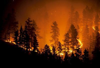 Wildfire RTSA