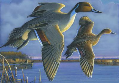 Wisconsin 2021 Duck Stamp
