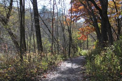 Whitewater State Park trail.JPG