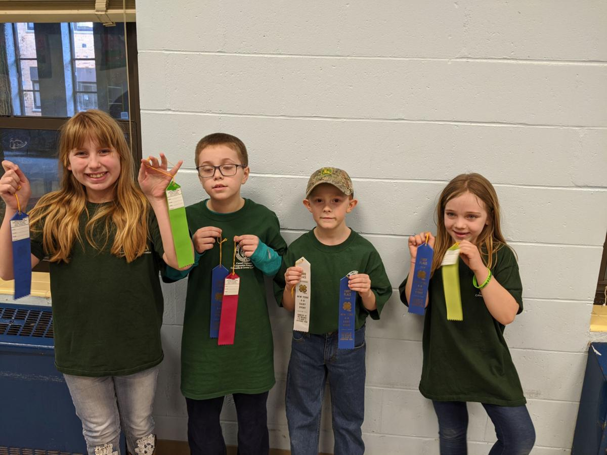 Local 4-H members compete in district Dairy Bowl competition