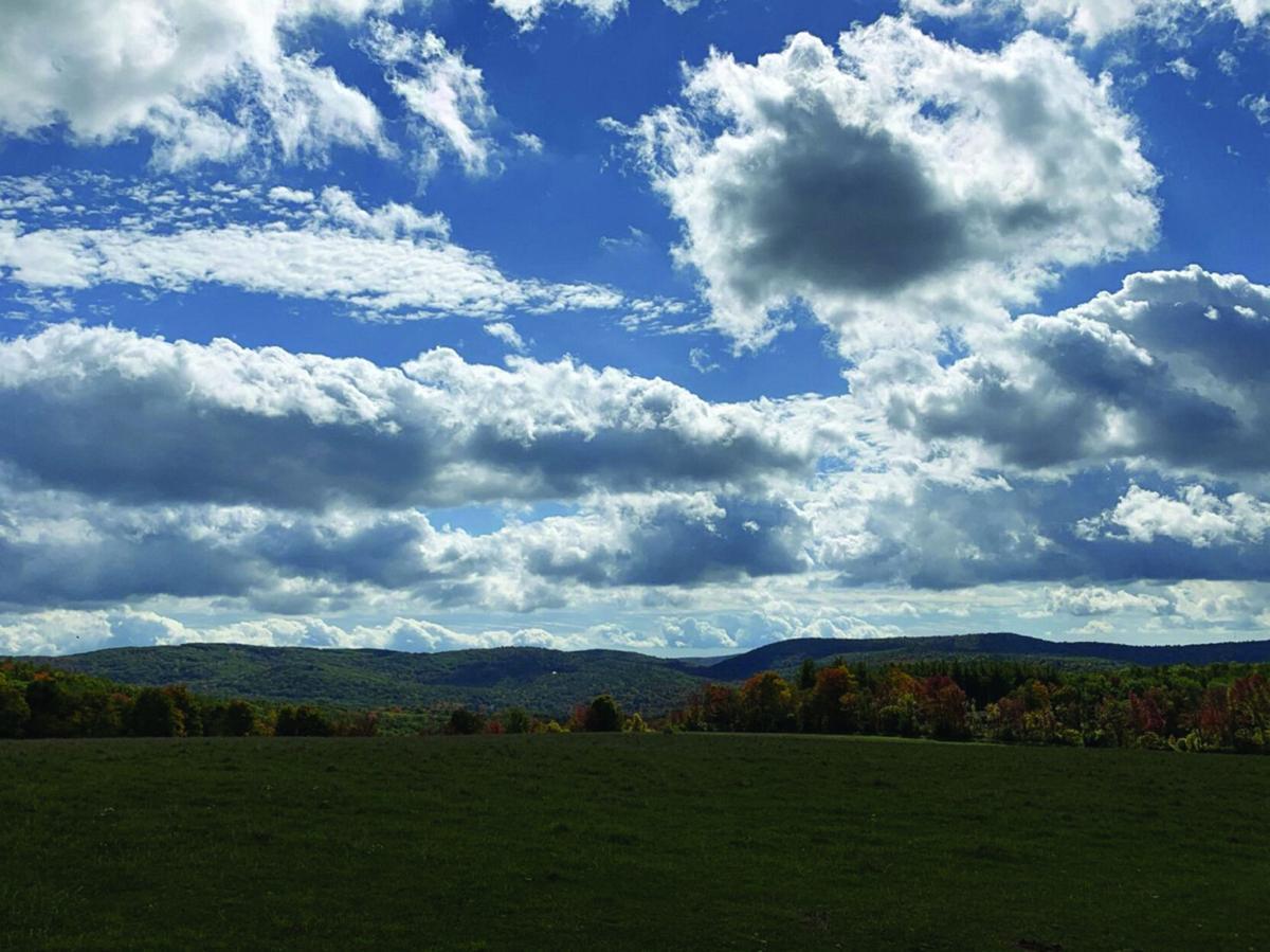 Wednesday Wanderings: Schor Conservation Area