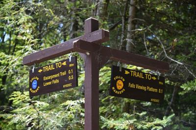 Forest rangers rescue two hikers in Hunter