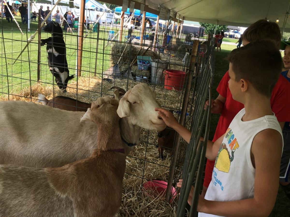 Youth Fair returns to cheers and crowded tents