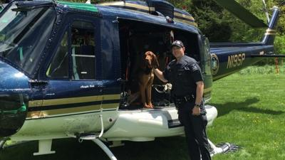 Police: Car theft suspect found by state police bloodhound