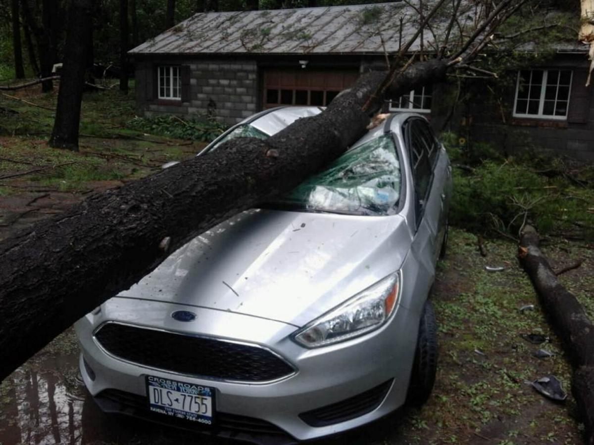 Stuyvesant cleans up after massive storms