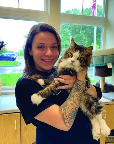 'Shelter at Home' raffle to benefit CGHS/SPCA