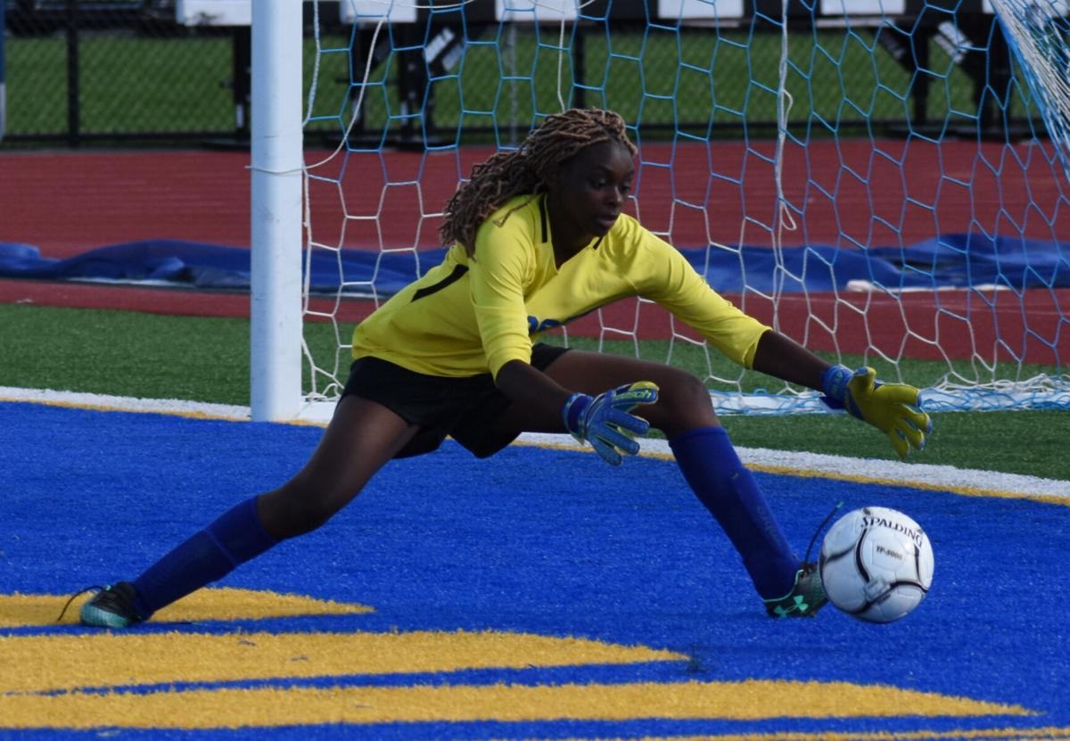 LOCAL ROUNDUP: Fletcher's five goals lead Wildcats to victory
