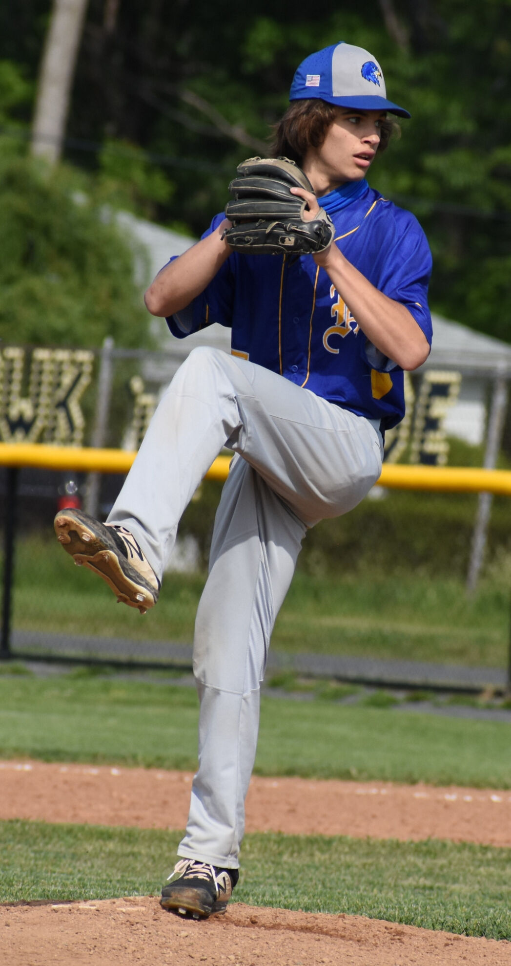 H.S. BASEBALL: Hudson tops Chatham to wrap up Patroon title
