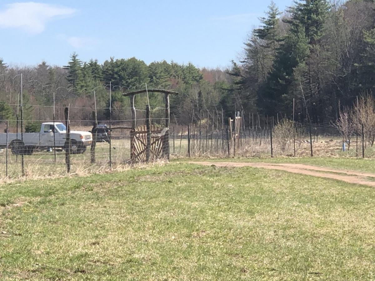 Police charge property owner in Cairo brush fire