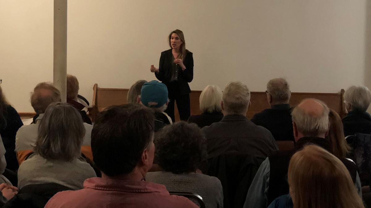 Greene Democrats throw support to Hinchey
