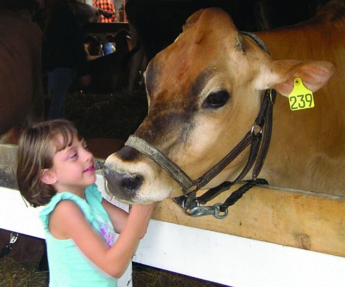 Old favorites returning to county fair