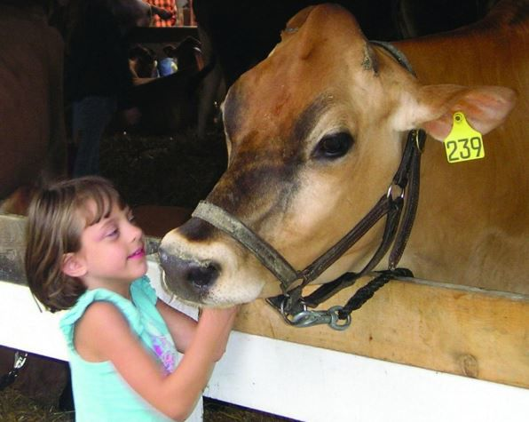 Columbia County Fair canceled