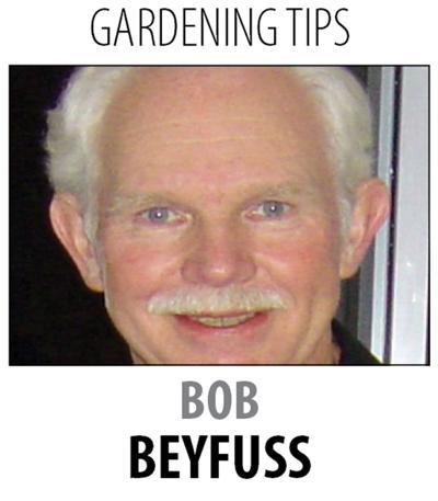 Gardening during a heat wave