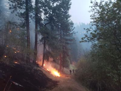 Whitetail Loop fire photo