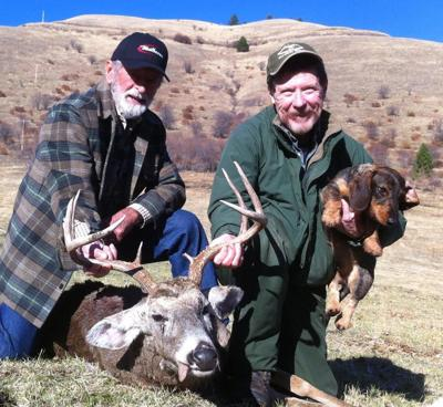 Certified tracking dogs can help hunters find lost game   News