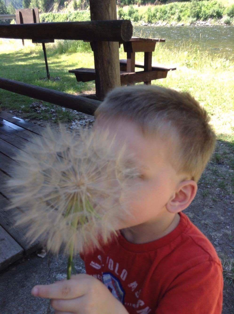 Lowell /Syringa News: Summertime in Lowell
