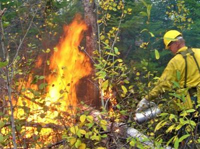 Fall prescribed fire planned on the Nez Perce-Clearwater National Forests