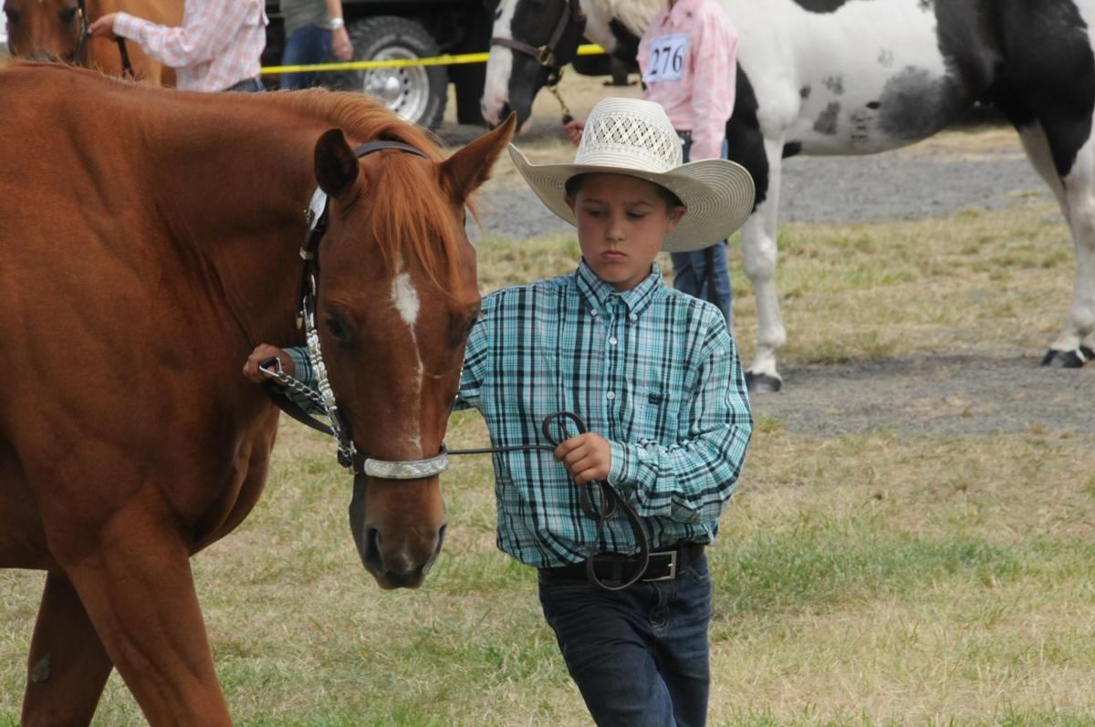 Idaho County Fair 2019