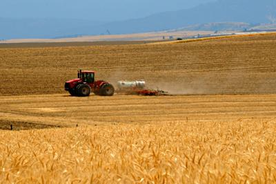 Farming operations near Cottonwood