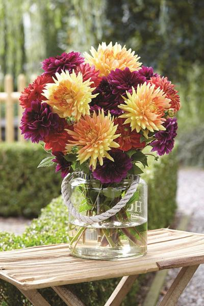 From garden to bouquet – growing your own cut flowers