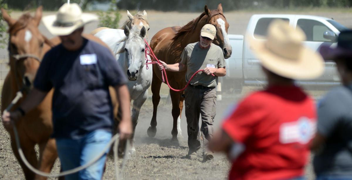 Operation Horses & Heroes: Veterans seek, find help at Grangeville ranch