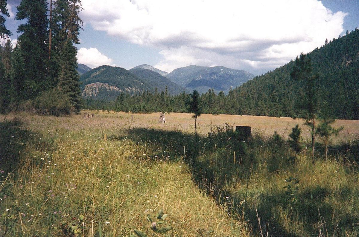 Idaho County: Dead Man's Flat | Special Sections