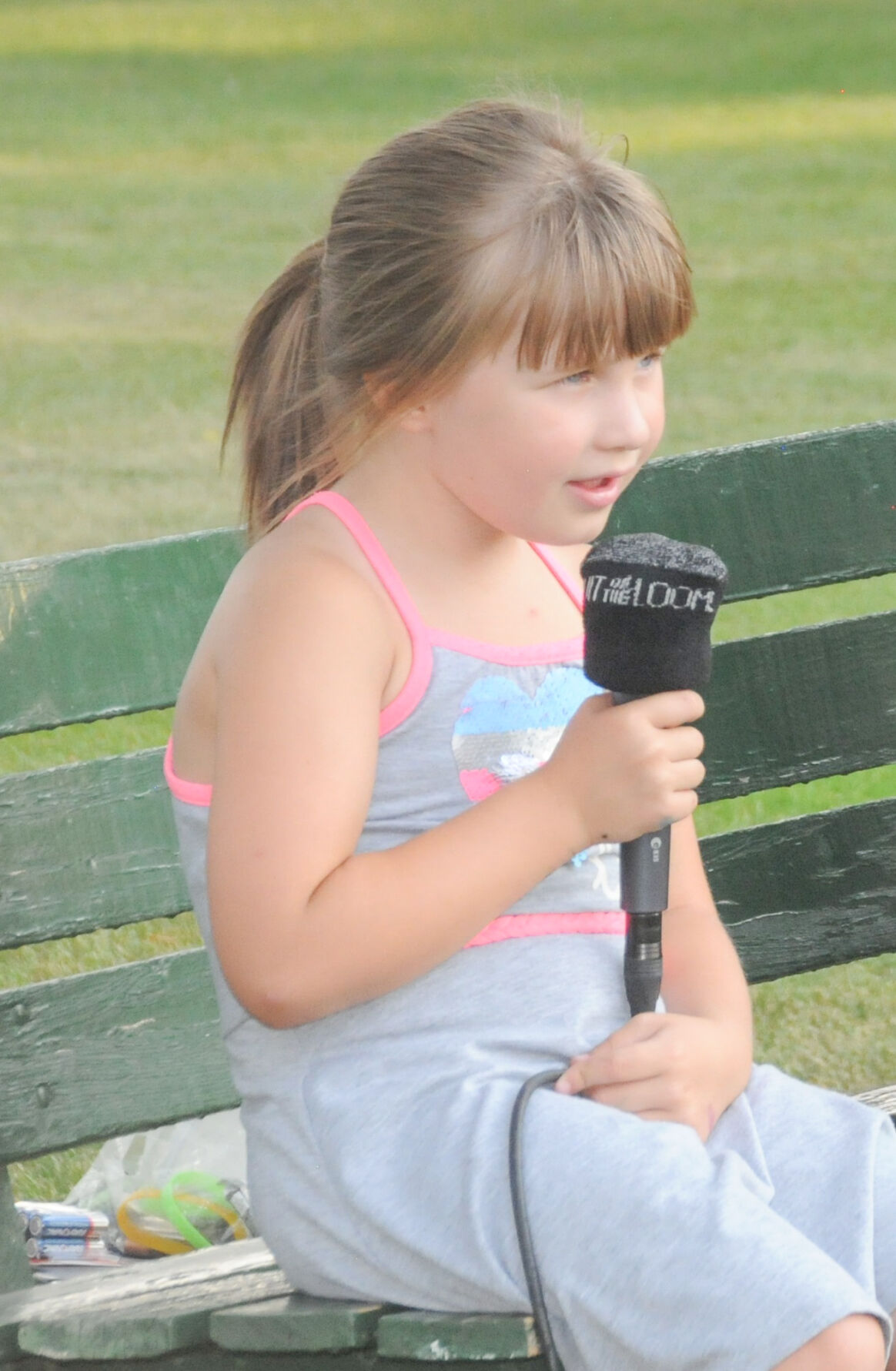 Cottonwood concert in the park photo 2