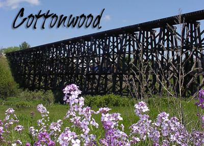 Cottonwood News standing
