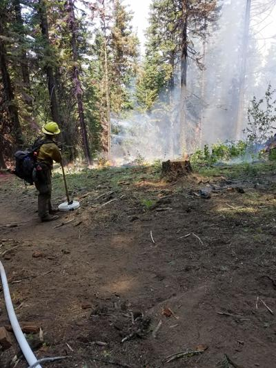 Evacuation status downgraded on Rattlesnake Creek Fire