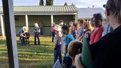 County 4-H'ers learn about fitting, showing