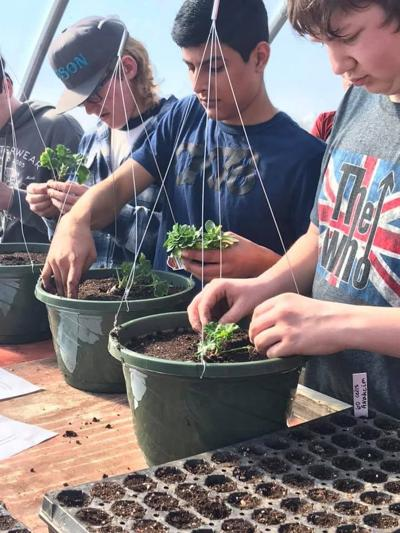 GHS plant sale set for May 11