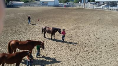 2018 Idaho County 4-H Horse Show: 24 turn out for event