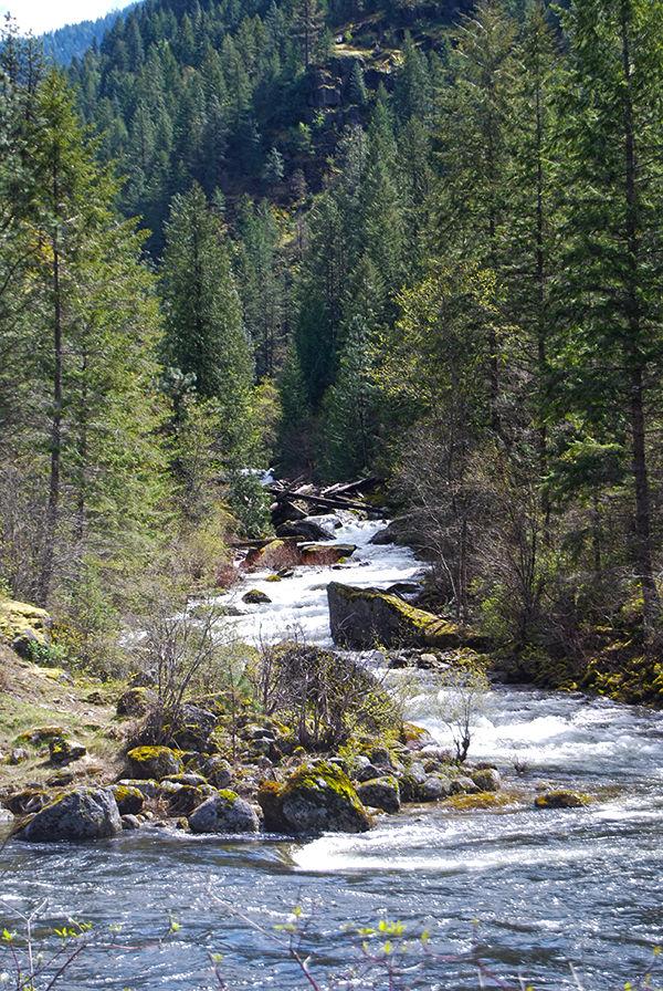 Waterfalls along U.S. Highway 12