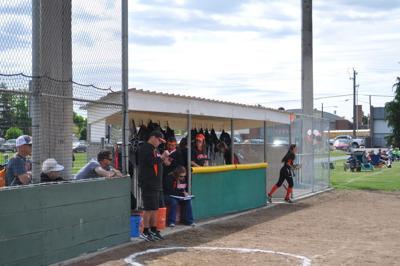 Ephrata Tigers softball