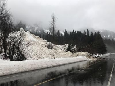 stevens pass avalanche