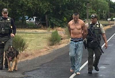 Wanted man accused of fleeing police near Othello found hiding in