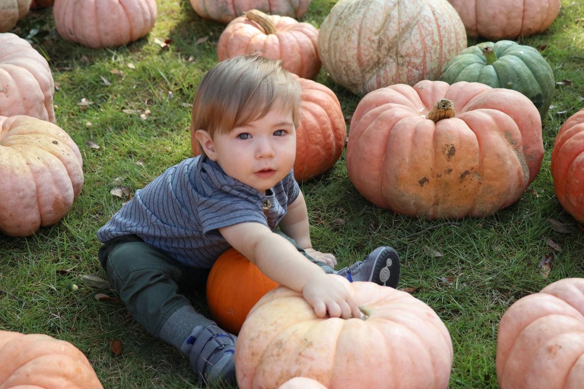FUMC 2019 Pumpkin Patch - Joseph Coats_0842.jpg
