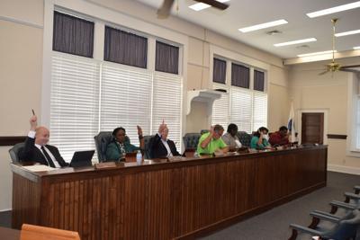 DSC_0134-council votes (1).JPG
