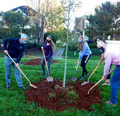 Concord Arbor Day