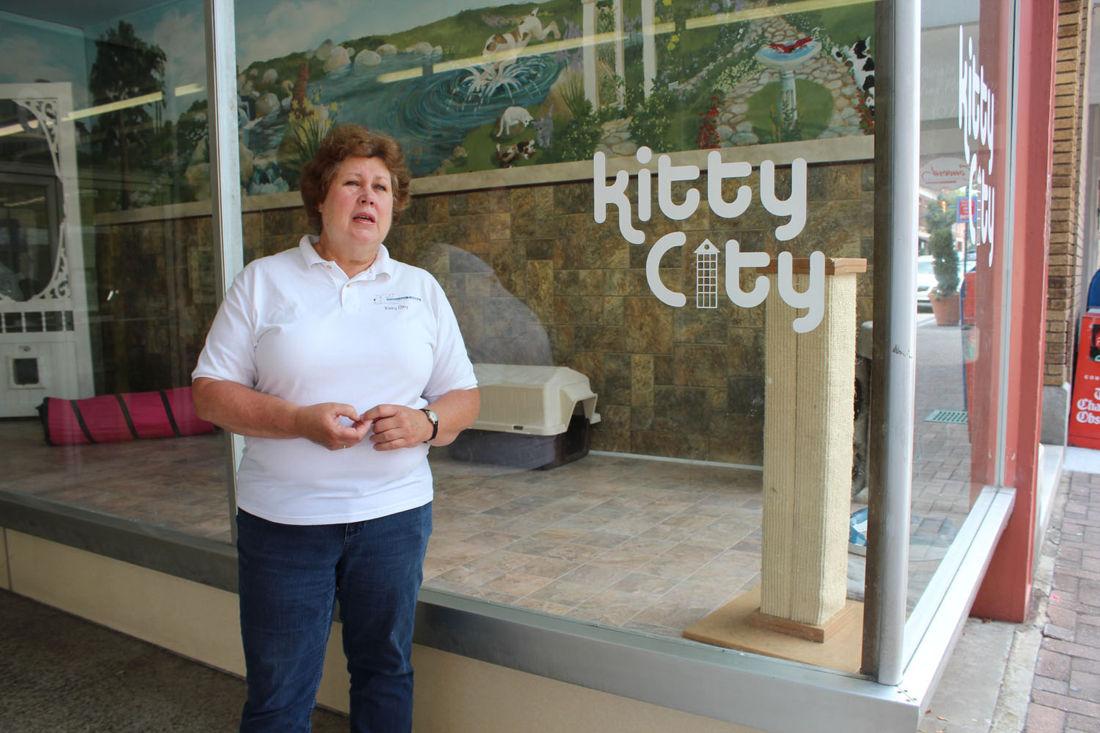Kitty City closing